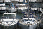 Port of Frejus — Stock Photo