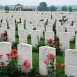 Stock Photo: Tyne Cot