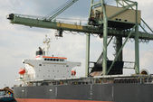 Port of Antwerp — Stock Photo