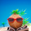 Trendy coconut on his travels — Stock Photo