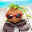 Cool coconut adventurer — Stock Photo