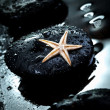 Massage stone and starfish — Stock Photo