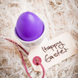Purple Easter Egg Amidst Feathers — Stock Photo