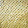 Yellow Green Fish Net — Stock Photo