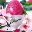 Pink Easter Still Life - Foto Stock