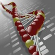 DNA strand — Stock Photo #8466017