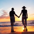Senior Couple Enjoying Sunset at the Beach — Stock Photo #10045583