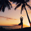 Silhouette of a Beautiful Yoga Woman at Sunset — Stock Photo #10560374