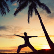 Stock Photo: Silhouette of a Beautiful Yoga Woman at Sunset