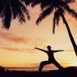 Silhouette of a Beautiful Yoga Woman at Sunset — Stock Photo #10560578