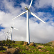 Stock Photo: Windmills with Blue Sky