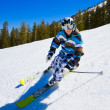 Skier having fun on the Mountain - Stock Photo