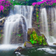 Stock Photo: Waterfall in Hawaii