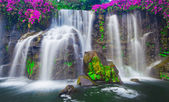 Waterfall in Hawaii — Stock Photo