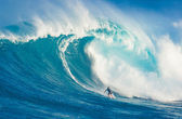 MAUI, HI - MARCH 13: Professional surfer Billy Kemper rides a gi — Foto de Stock