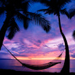 Beautiful Vacation Sunset, Hammock Silhouette with Palm Trees — Stok fotoğraf