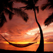 Stock Photo: Beautiful Vacation Sunset, Hammock Silhouette with Palm Trees