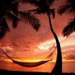 Royalty-Free Stock Photo: Beautiful Vacation Sunset, Hammock Silhouette with Palm Trees