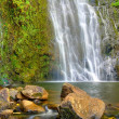 Beautiful Lush Waterfall — Stock Photo #8475167