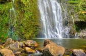 Beautiful Lush Waterfall — Stock Photo