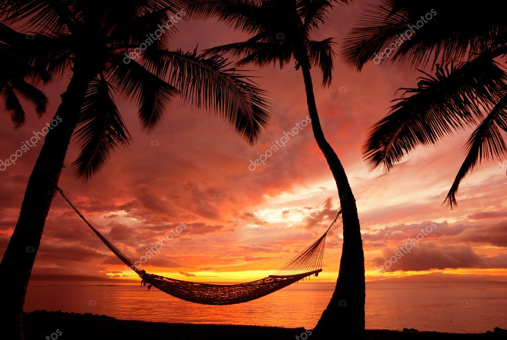 Beautiful Vacation Sunset, Hammock Silhouette With Palm