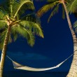 Tropical Night, Palm Trees and Hammock — Stock Photo