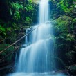 Stock Photo: Beautiful Lush Waterfall in Hawaii