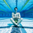 Swimmer in Pool UnderWater - Stock Photo