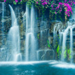 Waterfall — Stock Photo