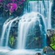 Waterfall — Stock Photo #8616046