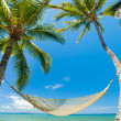 Stock Photo: Tropical Palm Trees and Hammock