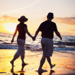 Senior Couple Enjoying Sunset at the Beach — Stock Photo #9838626
