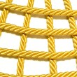 Stock Photo: COLDEN ROPE