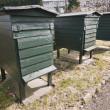 Stock Photo: Green wooden beehives for flower impollination