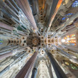 Ceiling Sagrada Familia — Stock Photo