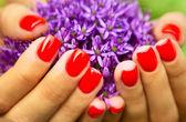 Flower in hand — Stock Photo