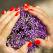 Purple flower heart — Foto Stock