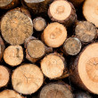Woodstack background - Stock Photo