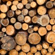 Woodstacks - Stock Photo