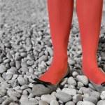 Red legs — Stock Photo