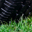 Wheel on the grass — Stock Photo