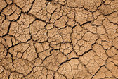 Tekstury ziemi — Zdjęcie stockowe
