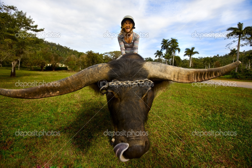 Girl sits on a large animal yak — Stock Photo #8668298