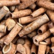Many rusty bullets — Stock Photo