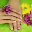 Hands with flowers — Stock Photo