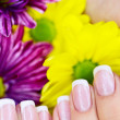 French manicure made - Stock Photo