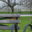 Stock Photo: Benches at park