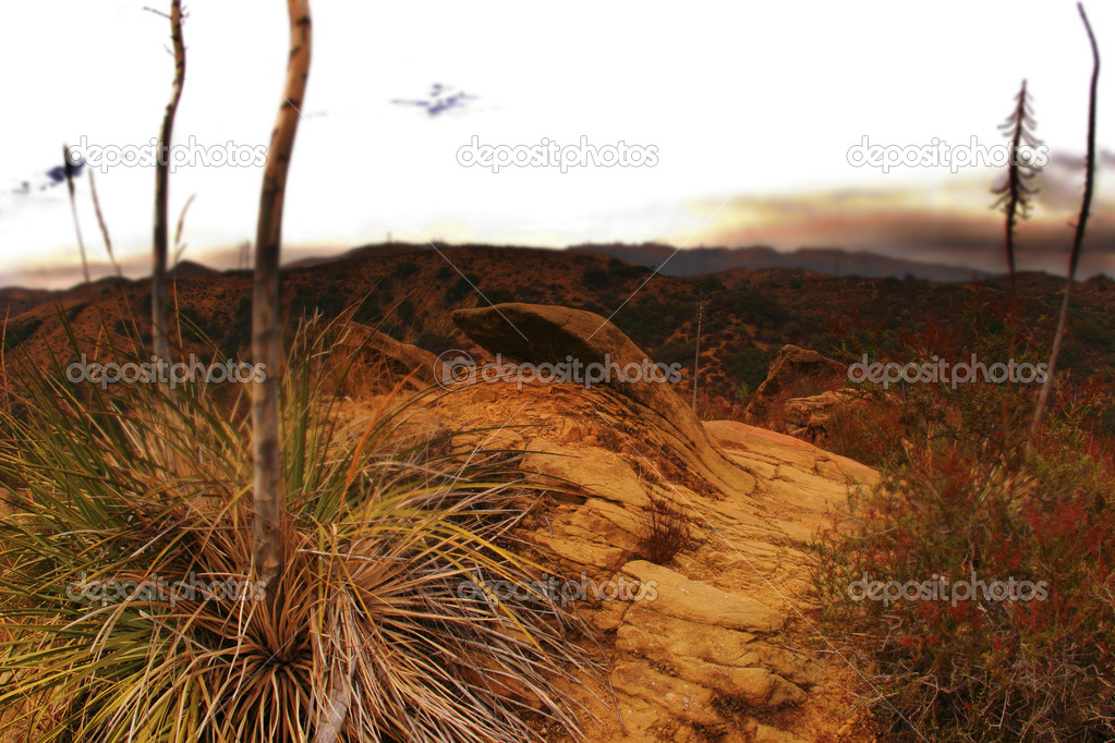 Photo of desert with yellow rock formations and horizon — Stock Photo #8448743