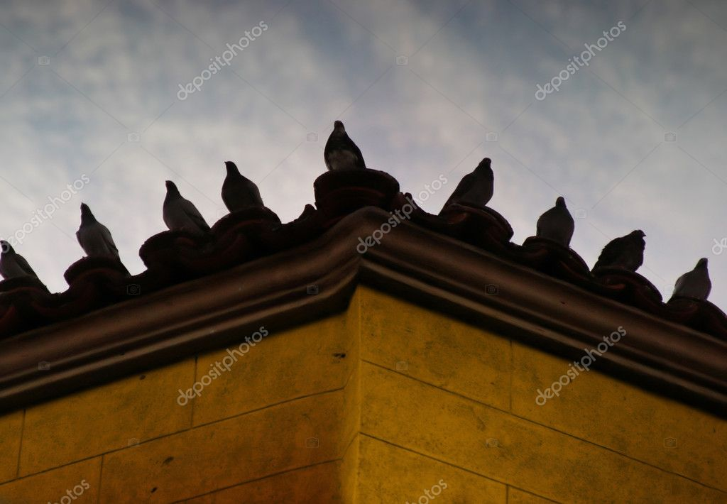 Pigeons sitting on a roof corner with cloudy sky behind — Stock Photo #8450062