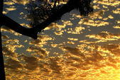 Vacker himmel — Stockfoto
